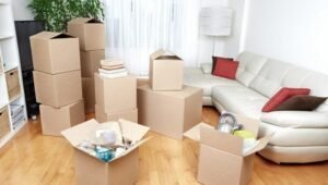 Packers and Movers Dilshad Garden Delhi