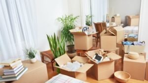 Packers and Movers Mundka Delhi