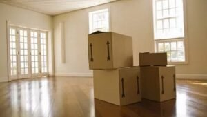 Packers and Movers Sector 137 Noida