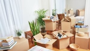 Packers and Movers Sector 15 Dwarka Delhi