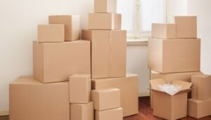 Packers and Movers Sector 21 Dwarka Delhi