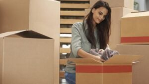 Packers and Movers Sector 29 Dwarka Delhi