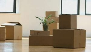 Packers and Movers Sector 4 Dwarka Delhi