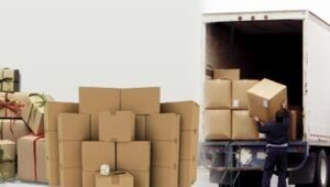 Packers and Movers Sector 50 Noida