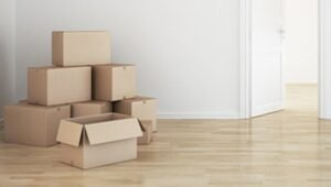 Packers and Movers Sector 62 Noida