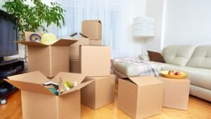 Packers and Movers Sector 7 Dwarka Delhi