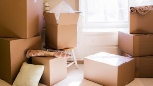 Packers and Movers Sector 80 Gurgaon