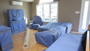 Packers and Movers Sector 9 Dwarka Delhi