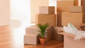 Packers and Movers Sector 9 Gurgaon